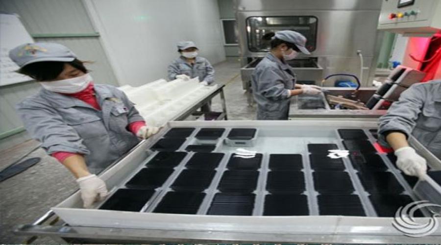 河津市绿拓新能源科技有限公司